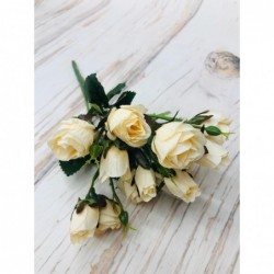 Cream Rose Bundle No. 4